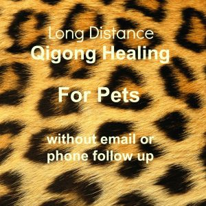Long Distance session no follow up for pets