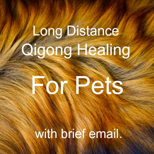 Long distance for pets with brief email.