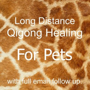 Long distance for pets with full email.